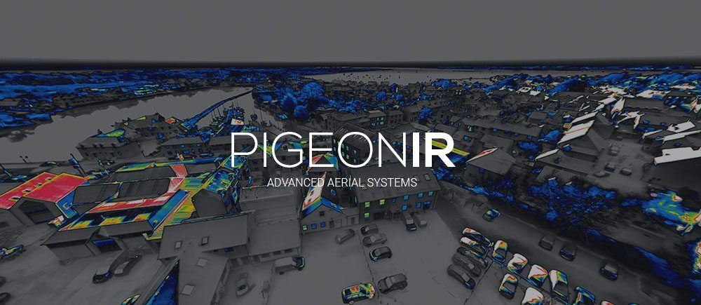 PigeonIR Article iRed - Advert