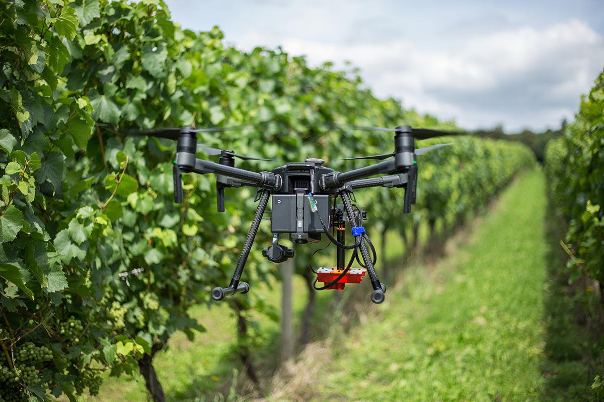 DJI Drone Multispectral Survey