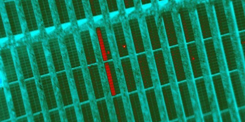 Thermal Imaging Solar Farm Survey